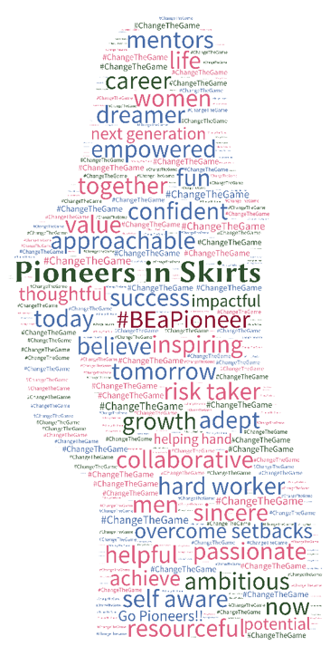 Attributes of a Pioneer